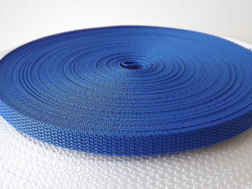 10mm Blue Polypropylene Webbing in 10 Metre Length